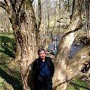 Владимир Чигарев