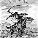 Zorro 166