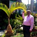 Hamid Sedik