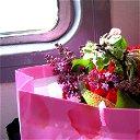 Любовь Волынская