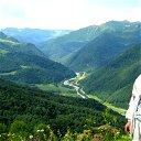 Олег Тарасенко