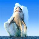 Shark_Murderer